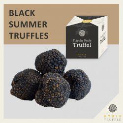 Fresh Black Summer Truffles (Tuber aestivum)