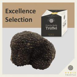 PYXIS Excellence Selection - Frische Burgunder-Trüffel (Tuber uncinatum) - 300 Gramm